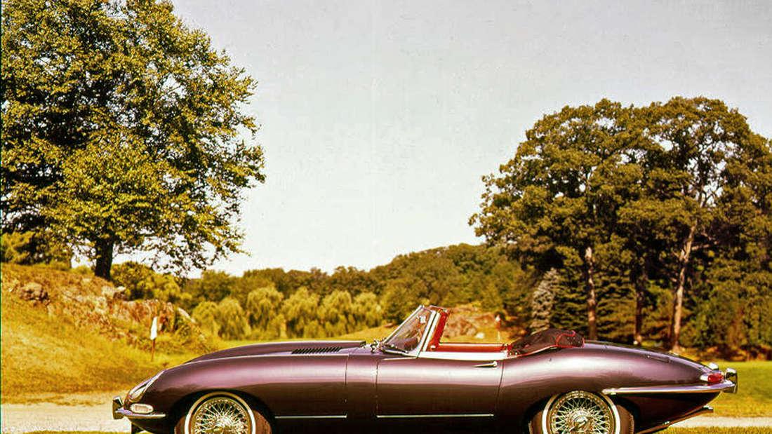 Jaguar E-Type Cabrio auf einer Wiese stehend