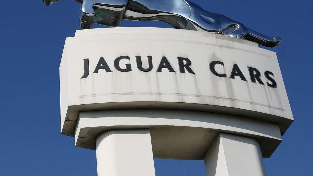 Manifestiertes Jaguar-Logo vor blauem Himmel