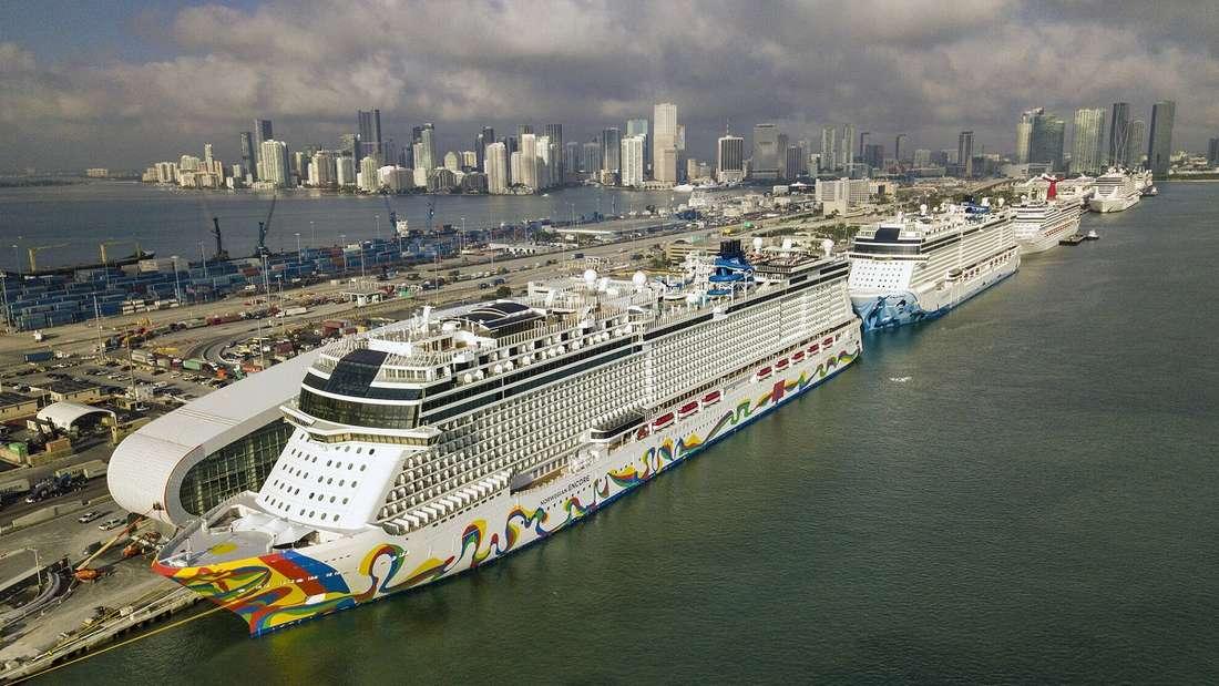 """Das Kreuzfahrtschiff """"Norwegian Encore"""" liegt im Hafen von Miami."""