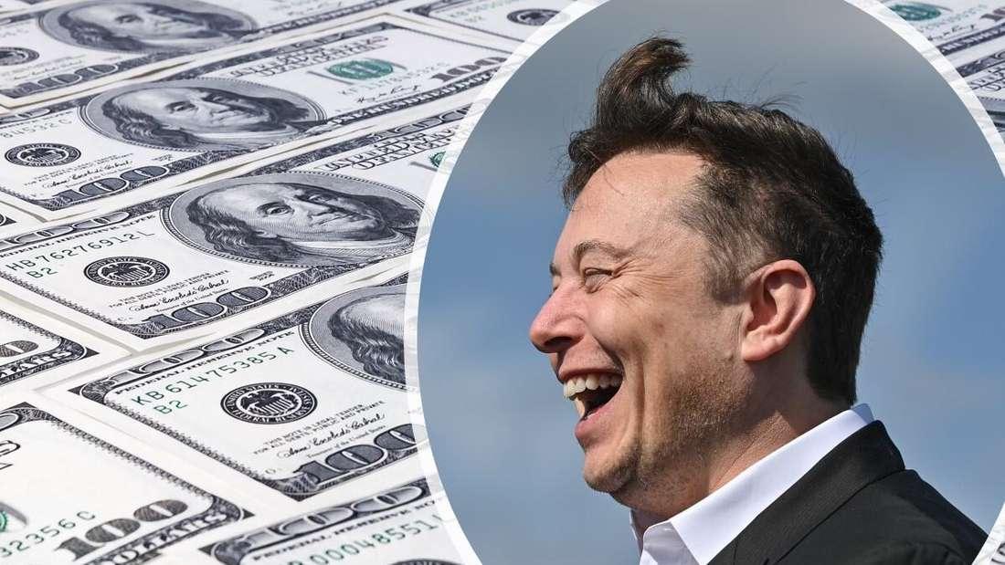 Bildmontage aus US-Dollar-Noten (links) und einem Bild von Elon Musk (rechts)