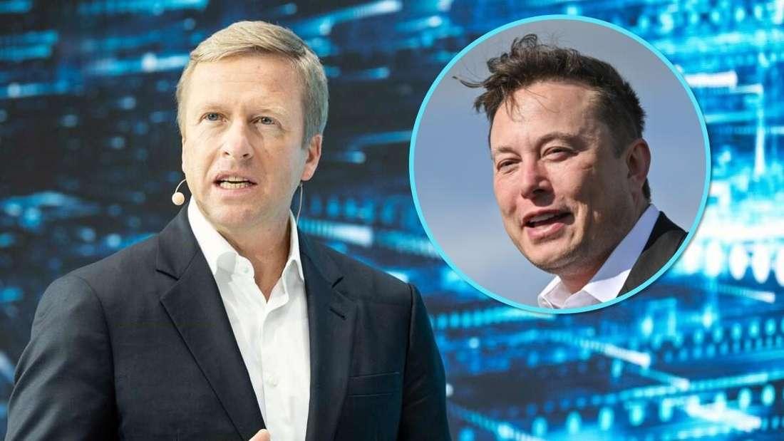 BMW-Vorstandsvorsitzender Oliver Zipse (groß) und Tesla-CEO Elon Musk (klein)