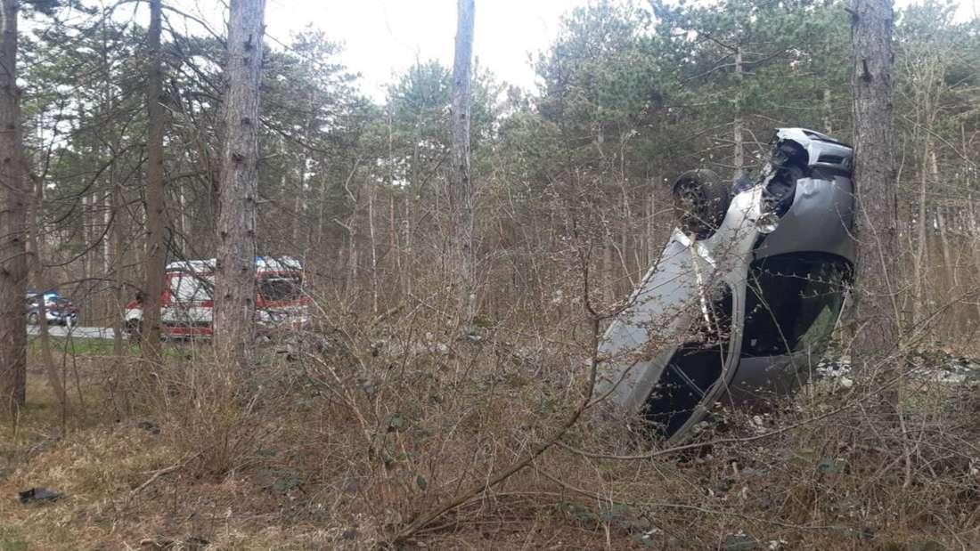Ein silberner Wagen steht auf dem Kofferraum hochkant an einem Baum angelehnt.