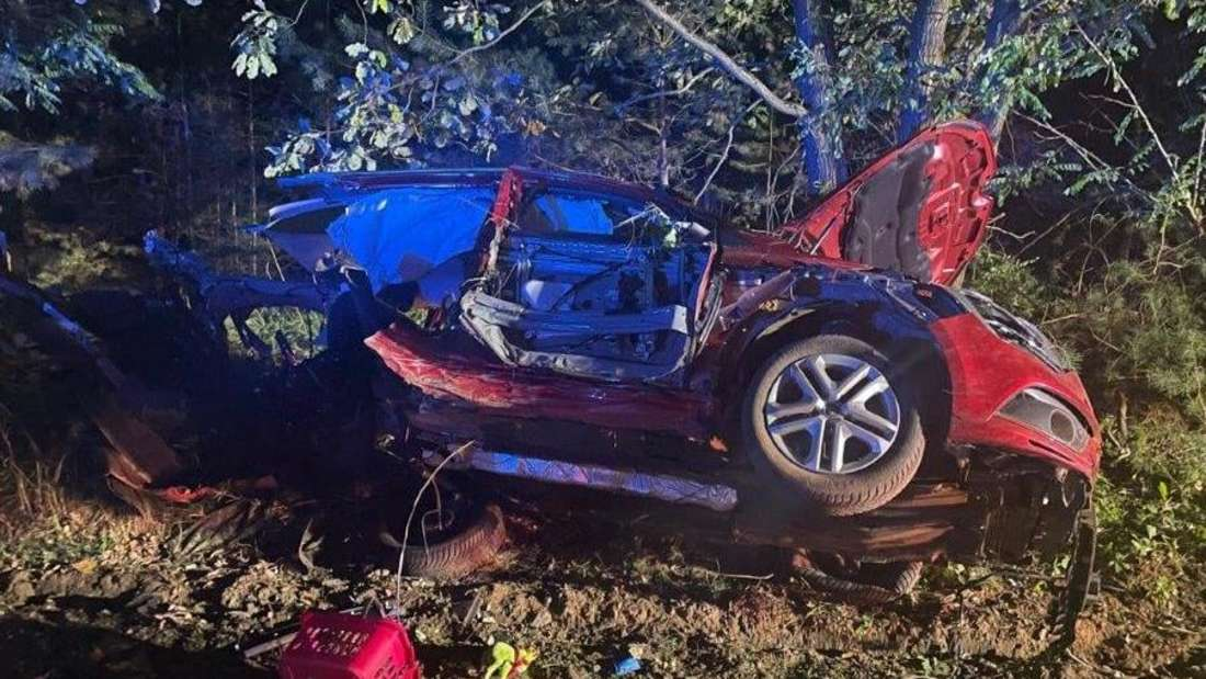 Wrack eines roten Renault Mégane vor Bäumen